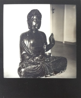 Buddha, fresh picture!