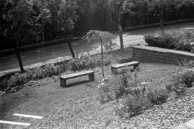 160722 - Fomapan 400 - Leica IIIa - 014.jpg