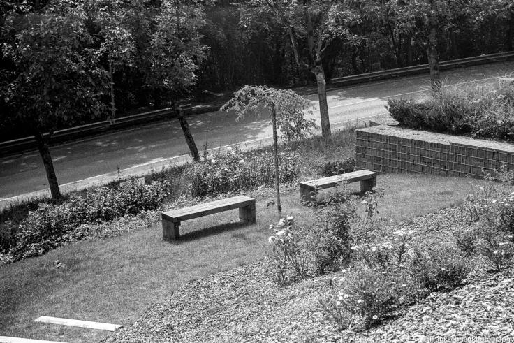160722 - Fomapan 400 - Leica IIIa - 015