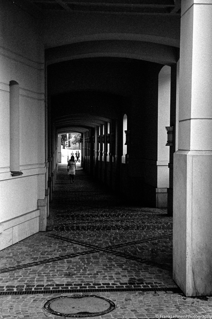 160721 - Kodak Tri-X - Leica IIIa - 020