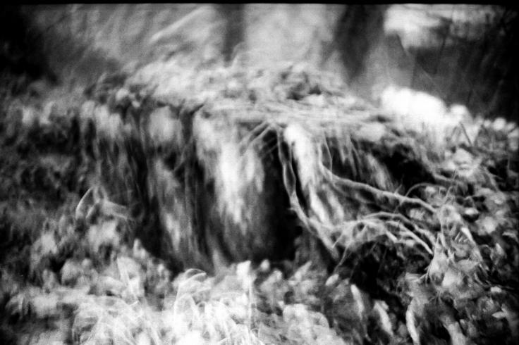 darkroomfloor001-3